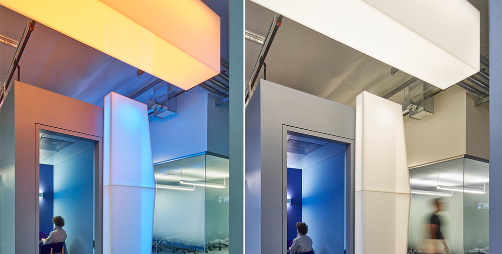 Custom light boxes lit in two different colors hang outside a conference room at the Google Shorebird workspace