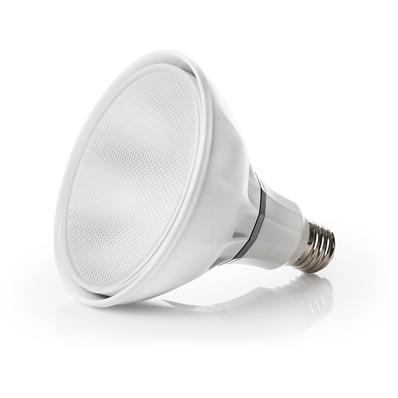 1264 S38 Lamps